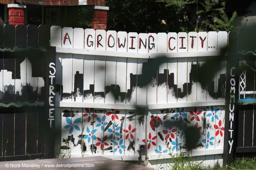 A-growing-community-detroit-georgia-street